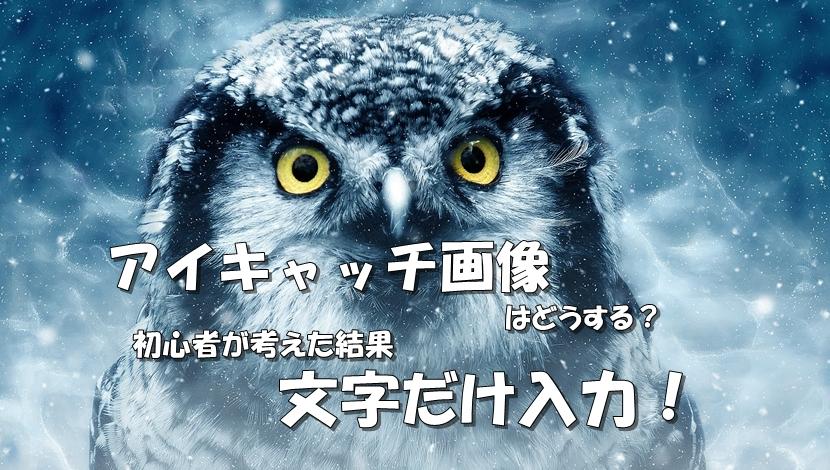 フクロウの目
